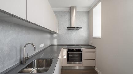 Modern contemporary interior. Kitchen.