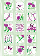 vector beautiful set of decorative Scottish flowers thistle and heather