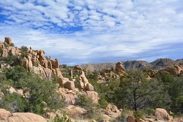 Desert Mountain Vista