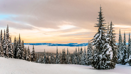 Wall Mural - Sunset over the Winter Landscape with Snow Covered Trees on the Ski Hills near the village of Sun Peaks in the Shuswap Highlands of central British Columbia, Canada