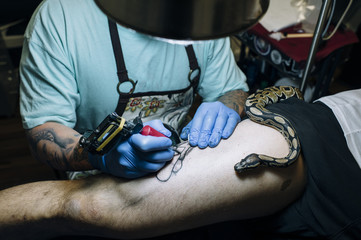 Tattoo master with snake