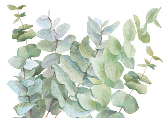 watercolor illustration leaves