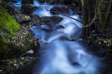 A shallow river in the forest in Oslo