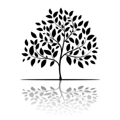 Tree silhouette with leaves on white background vector
