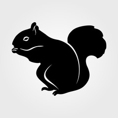 Squirrel icon on a white background