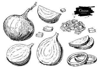 Onion hand drawn vector set. Full, rings and Half cutout slice. Isolated Vegetable engraved style