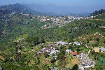 Haputale village on the range