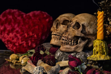 Candle, Two skulls with bone and dry flowers on valentines night
