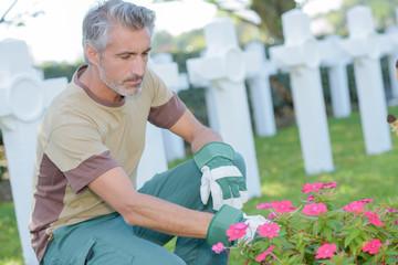 Printed roller blinds Cemetery Man tending flowers in graveyard