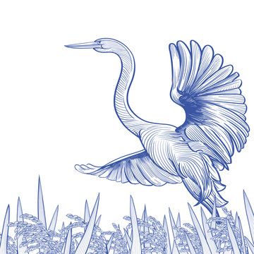 Egret taking flight from a field of rice. Good for a packaging graphic.