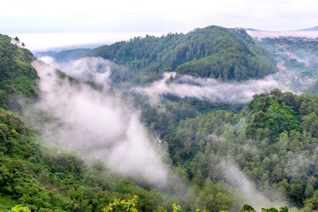 Misty hill,  mist flowing between two hill in the top of the forest. Located in Keraton Cliff, Bandung, West Java, Indonesia