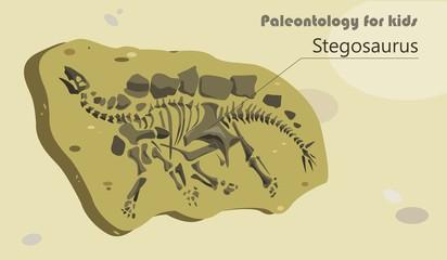 Paleontology for kids