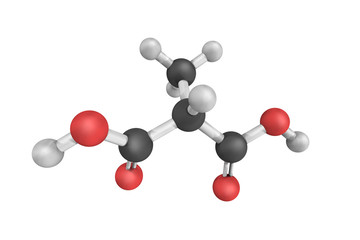 Methylmalonic acid is a dicarboxylic acid that is a C-methylated