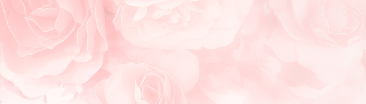 sweet color roses flower in pastel tone with blurred style for background pattern texture