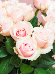 Bouquet of beautiful natural pink roses close up on a soft pink pastel background. Valentines Day romantic concept. Copy space