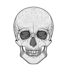 Human skull tribal style.Tattoo blackwork. Vector hand drawn illustration. Boho