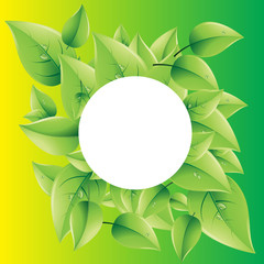 green vector background clean nature eco leaf