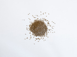 Pile of caraway seeds on a white background