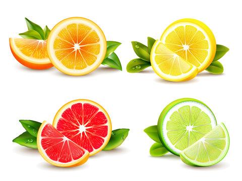 Citrus Fruits  Segments 4 Realistic Icons