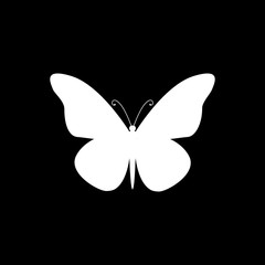 Vector flat isolated white butterfly icon