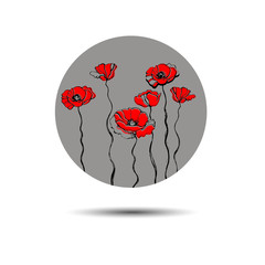 poppy nature flower vector plant pattern drawing