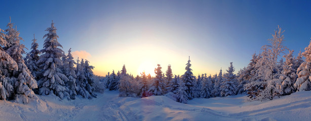 Colorful landscape at the winter sunrise in the mountain forest. Winter view from Jested