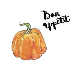 hand drawn watercolor vegetables pumpkin with handwritten words