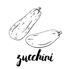 hand drawn graphic vegetables zucchini with handwritten words