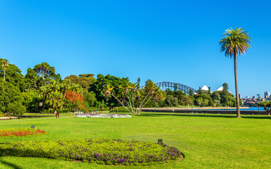 Royal Botanical Garden of Sydney - Australia, New South Wales
