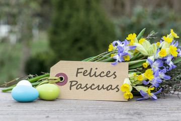 Best regards for Easter / spanish greeting card for Easter