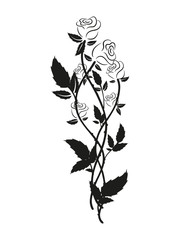Black and white roses silhouette. Floral ornament of black and white roses. Tattoo floral ornament.