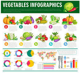 Vegetables healthy food vector infographics