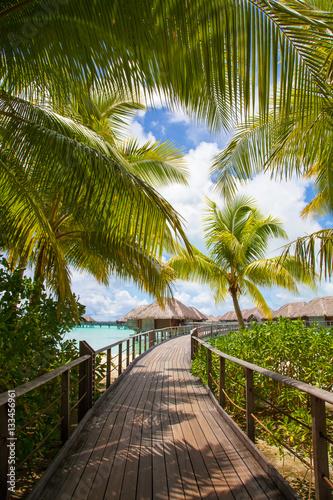 Bora Bora Walkway To Sea And Bungalows Villas Palm Trees Framing