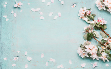 Spring nature background with lovely blossom in blue  pastel color, top view, banner. Springtime concept Fototapete