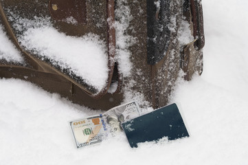 Lost Luggagge In Snow
