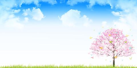 桜 鳥 春 背景