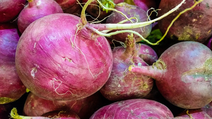 Group of fresh organic turnips in a marketplace