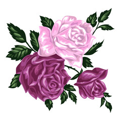 Isolated hand drawn bunch of pink roses, vector illustration.