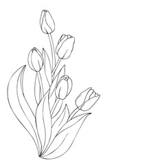 vector monochrome contour illustration of tulip flower vertical bouquet