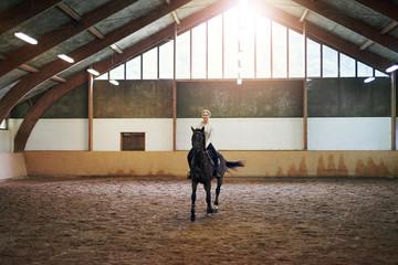 Poster Horseback riding Female riding dark horse in indoor paddock
