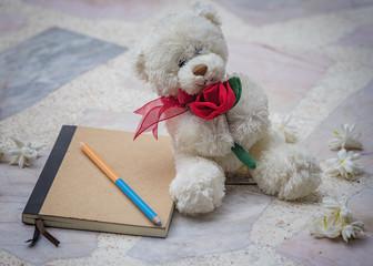 Diary,valentine day