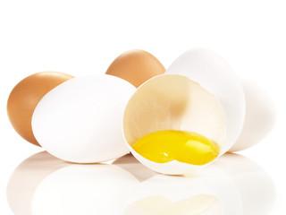 Eier - weiss und braun
