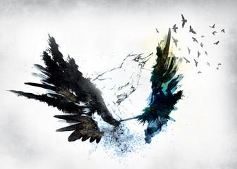 crow,