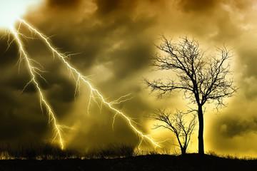 Foto op Plexiglas Zalm Storm