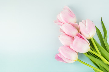 Foto op Aluminium Tulp Gorgeous tulips for holidays.