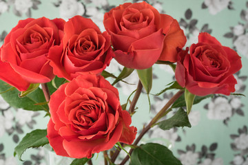 Close up of roses for Valentines Day.