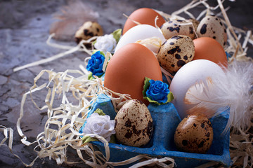 Chicken and quail eggs in carton box, Easter concept