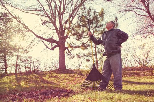 Man resting while raking leaves