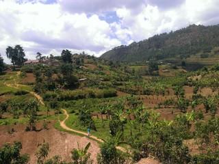 Farming land near Kisoro and Lake Mutanda in Uganda's South West.
