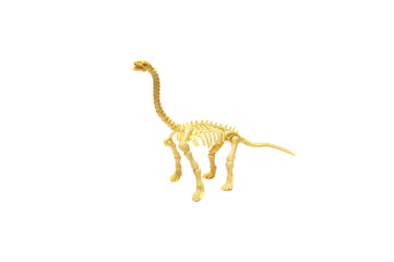 Toy dinosaur skeleton on a white background , space for text.